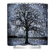 Winter Tree In Snowfall Shower Curtain by Elena Elisseeva