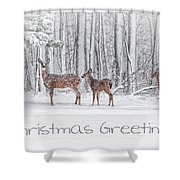Winter Visits Card Shower Curtain by Karol Livote