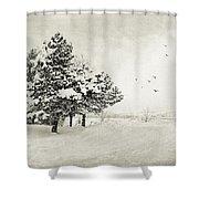 Winter White Shower Curtain by Julie Palencia