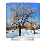Winter Willow Shower Curtain by Frozen in Time Fine Art Photography