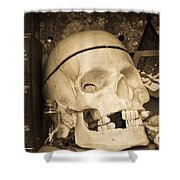 Witches Bookshelf Shower Curtain by Edward Fielding