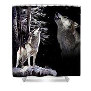Wolf  Howling Memory Shower Curtain by Regina Femrite