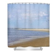 Wonderful World Shower Curtain by Kim Hojnacki