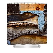 Wood Eagle Totem Shower Curtain by Lauren Leigh Hunter Fine Art Photography