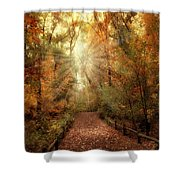 Woodland Light Shower Curtain by Jessica Jenney