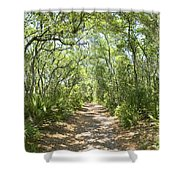 Woodland Path Shower Curtain by Glennis Siverson