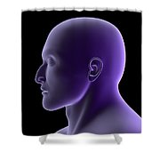 X-ray View Of Human Face, Profile View Shower Curtain by Stocktrek Images