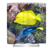 Yellow And Blue Tang Fish Shower Curtain by Susan Savad