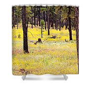 Yellow Forest Shower Curtain by Kume Bryant