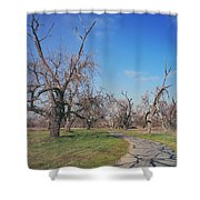 You Gave Me A Reason Shower Curtain by Laurie Search
