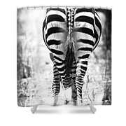 Zebra Butt Shower Curtain by Adam Romanowicz