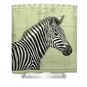 Zebra Shower Curtain by James W Johnson