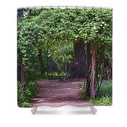 Zilker Botanical Tree Arbor Shower Curtain by Kristina Deane