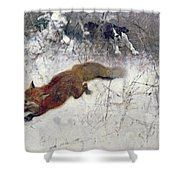 Fox Being Chased Through The Snow  Shower Curtain by Bruno Andreas Liljefors