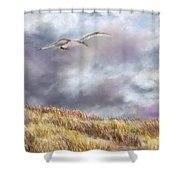 Seagull Flying Over Dunes Shower Curtain by Jack Skinner