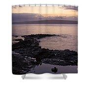 A Sense Sublime Shower Curtain by Sharon Mau