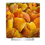 Autumn Leaves Shower Curtain by Elena Elisseeva