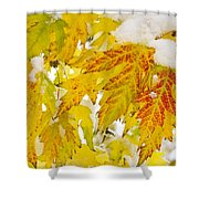 Autumn Snow  Shower Curtain by James BO  Insogna