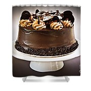 Chocolate Cake Shower Curtain by Elena Elisseeva