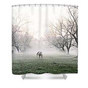 Daybreak Shower Curtain by Scott Pellegrin