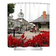 Downtown Kingston Shower Curtain by Valentino Visentini