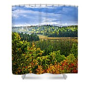 Fall Forest Rain Storm Shower Curtain by Elena Elisseeva