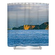 Gannets In Flight And Perce Rock Shower Curtain by Yves Marcoux