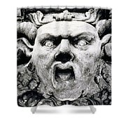 Gargoyle Shower Curtain by Simon Marsden