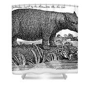 Hippopotamus Shower Curtain by Granger