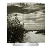 Let's Go To The Beach Shower Curtain by Susanne Van Hulst