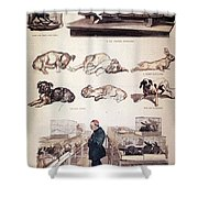 Louis Pasteur, French Chemist Shower Curtain by Science Source