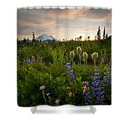 Lupine Sunset Shower Curtain by Mike  Dawson