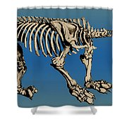 Megatherium Extinct Ground Sloth Shower Curtain by Science Source