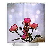 Reaching For The Light Shower Curtain by Judi Bagwell