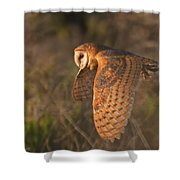 Silent Hunter Shower Curtain by Beth Sargent
