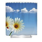 Spring Flowers Shower Curtain by Carlos Caetano
