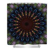 10 Minute Art 120611a Shower Curtain by David Lane