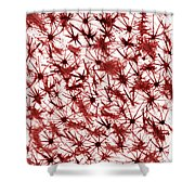 Red Abstract Shower Curtain by Frank Tschakert
