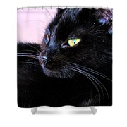 Green Eyes Shower Curtain by Art Dingo