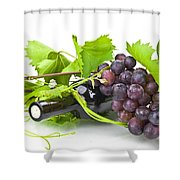 Red Wine Shower Curtain by Joana Kruse