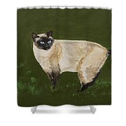 Sweetest Siamese Shower Curtain by Leslie Allen