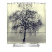 Winter Tree Shower Curtain by Joana Kruse