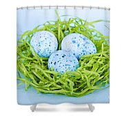 Blue Easter Eggs  Shower Curtain by Elena Elisseeva