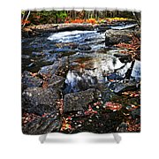 Fall Forest And River Landscape Shower Curtain by Elena Elisseeva