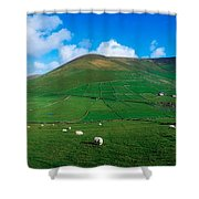 Slea Head, Dingle Peninsula, Co Kerry Shower Curtain by The Irish Image Collection