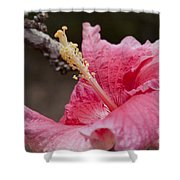 Art By Nature Shower Curtain by Sharon Mau