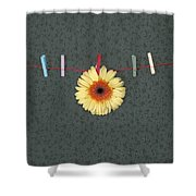 Gerbera Shower Curtain by Joana Kruse