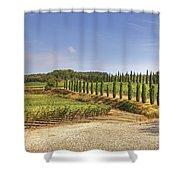 Tuscany Shower Curtain by Joana Kruse