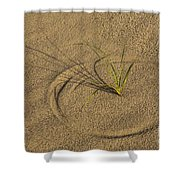 A Compass In The Sand Shower Curtain by Susan Candelario