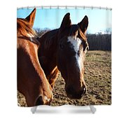 a cowboys best friend Shower Curtain by Robert Margetts